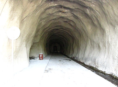 Intake tunnel of